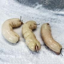 Svinjsko debelo črevo 25cm kos